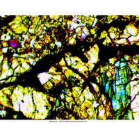 Mikroskop Delta Optical Genetic Pro Bino USB + akumulator