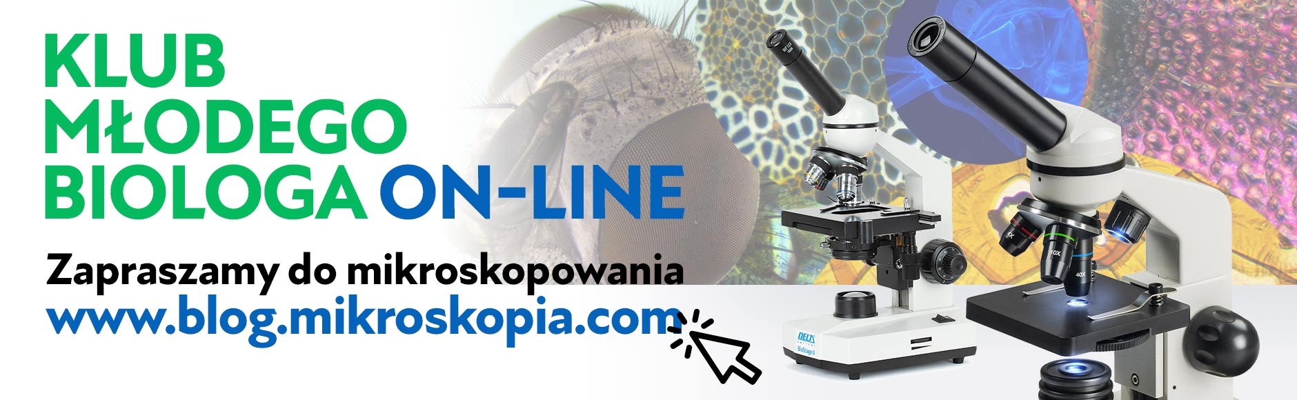 Mikroskopia Blog