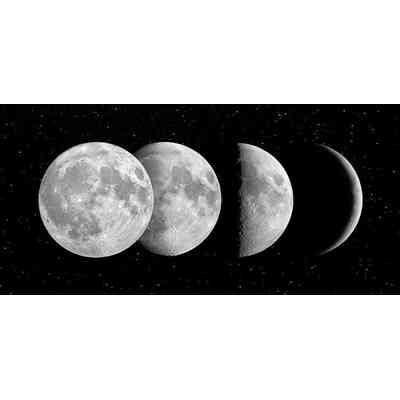 """[Zestaw] Filtr Celestron podwójny polaryzacyjny 1,25"""" + Fazy księżyca"""